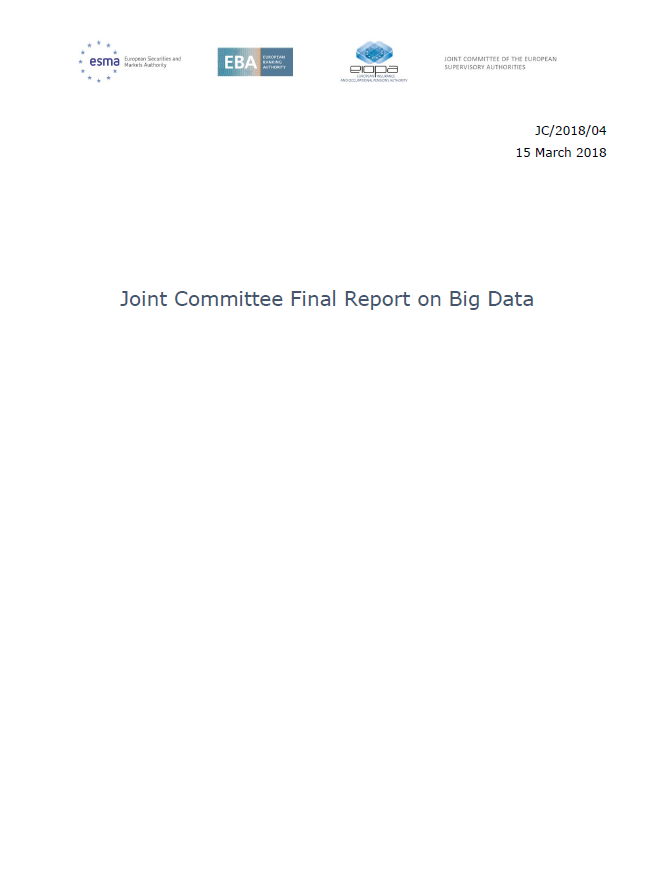 Final Report on Big Data